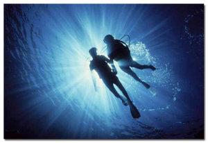 diversholdinghands1