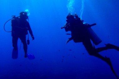 The blue depths