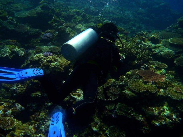 Underwater Moments