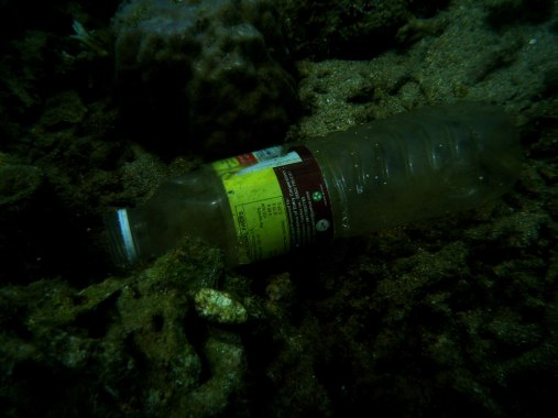 A plastic bottle over the corals