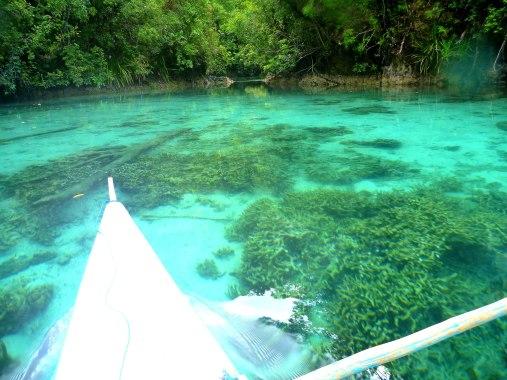 Towards the inner jellyfish lagoon