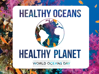 world ocean day 2015