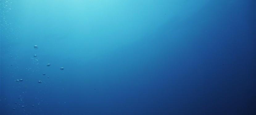 Diving in JigdupShoal